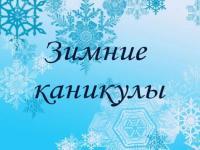 Зимние каникулы с пользой
